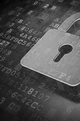 安全市场软件开发背景